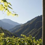 Südtirol | Alto Adige